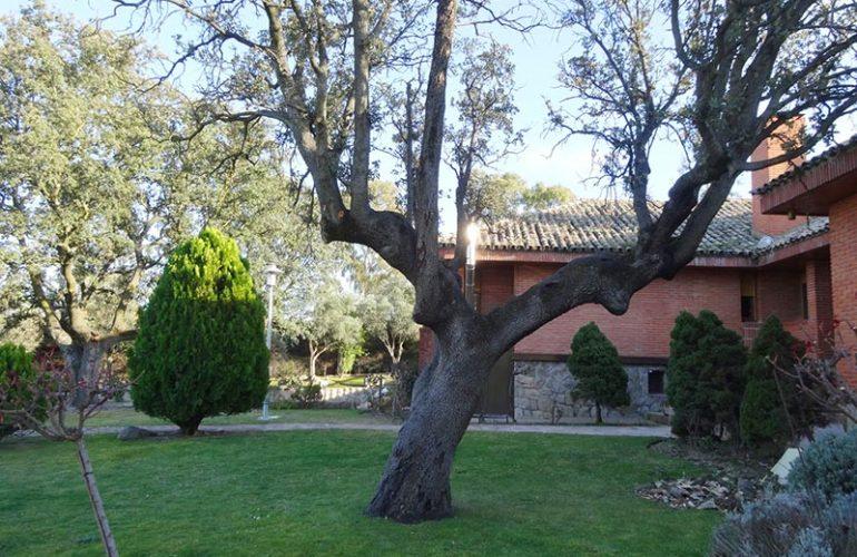 Vivir en una Residencia de Estudiantes Madrid - Blog de la Residencia Montepríncipe